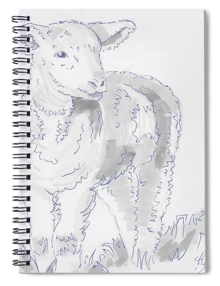 Lamb Drawing Using Marker Pen Spiral Notebook For Sale By Mike Jory