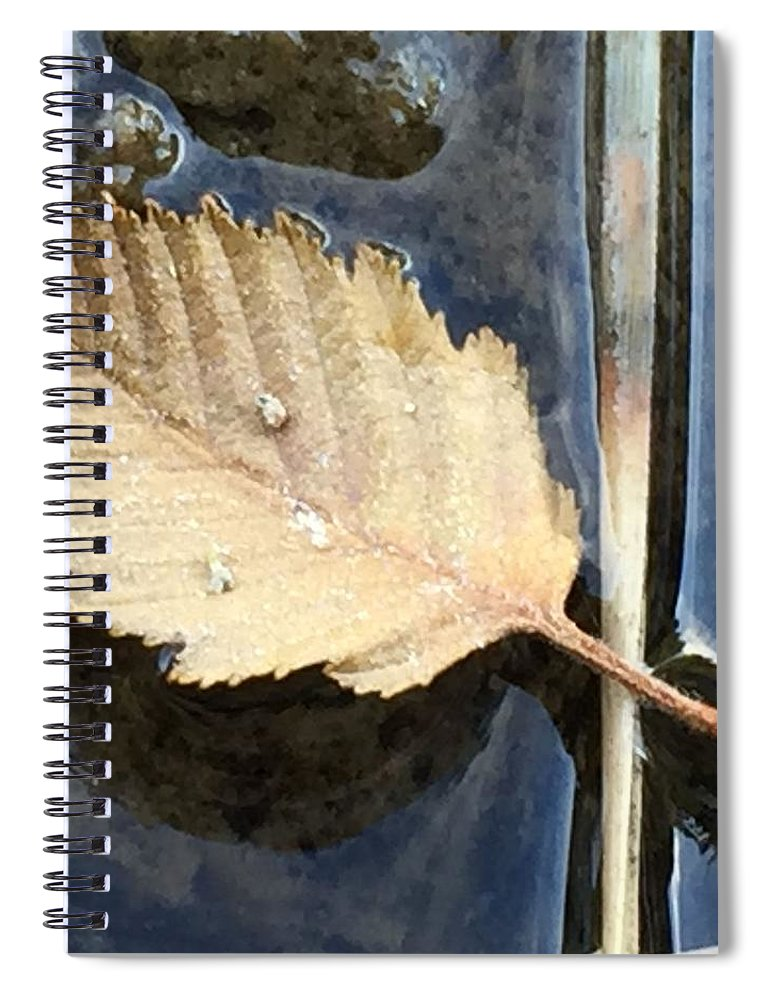 Leaf Spiral Notebook featuring the photograph Leaf on Water by Vonda Drees