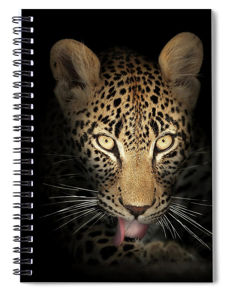 Leopard Spiral Notebook featuring the photograph Leopard In The Dark by Johan Swanepoel