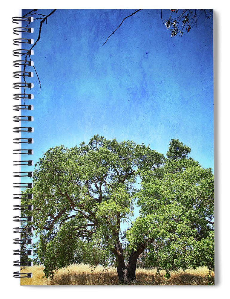 Olompali State Park Spiral Notebook featuring the photograph Let Me Love You by Laurie Search