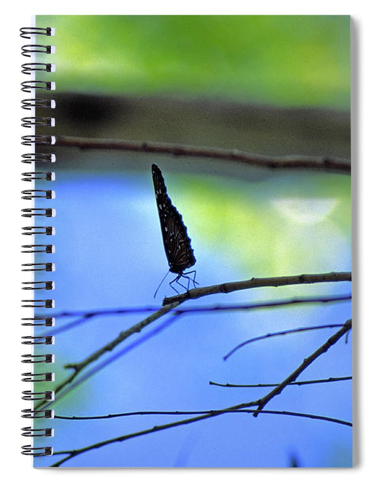 Butterfly Spiral Notebook featuring the photograph Life on the Edge by Randy Oberg
