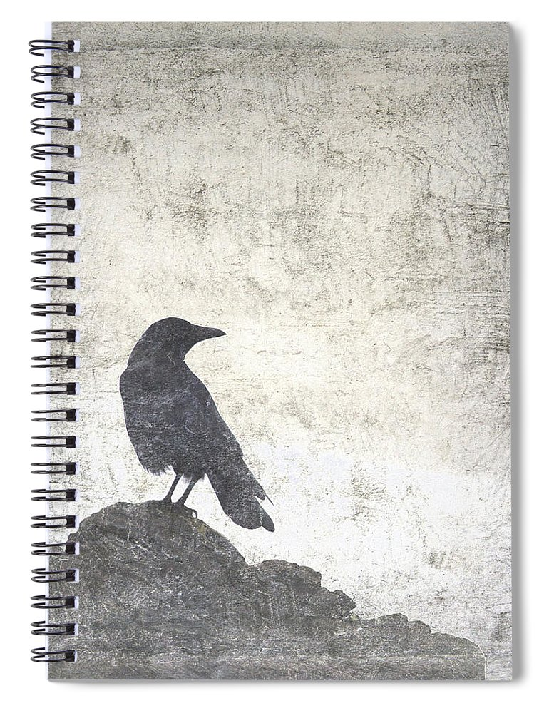 Crow Spiral Notebook featuring the photograph Looking Seaward by Carol Leigh