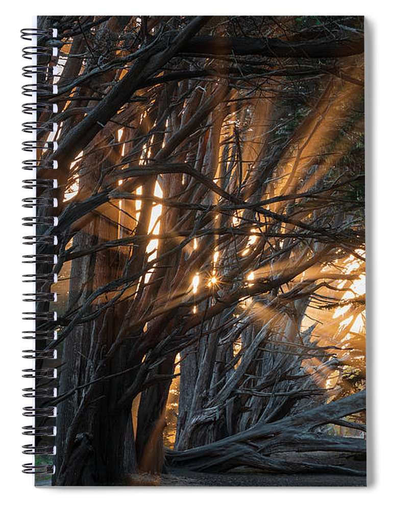 Big Sur Spiral Notebook featuring the photograph Magical Morning Light by Alexander Davidovich
