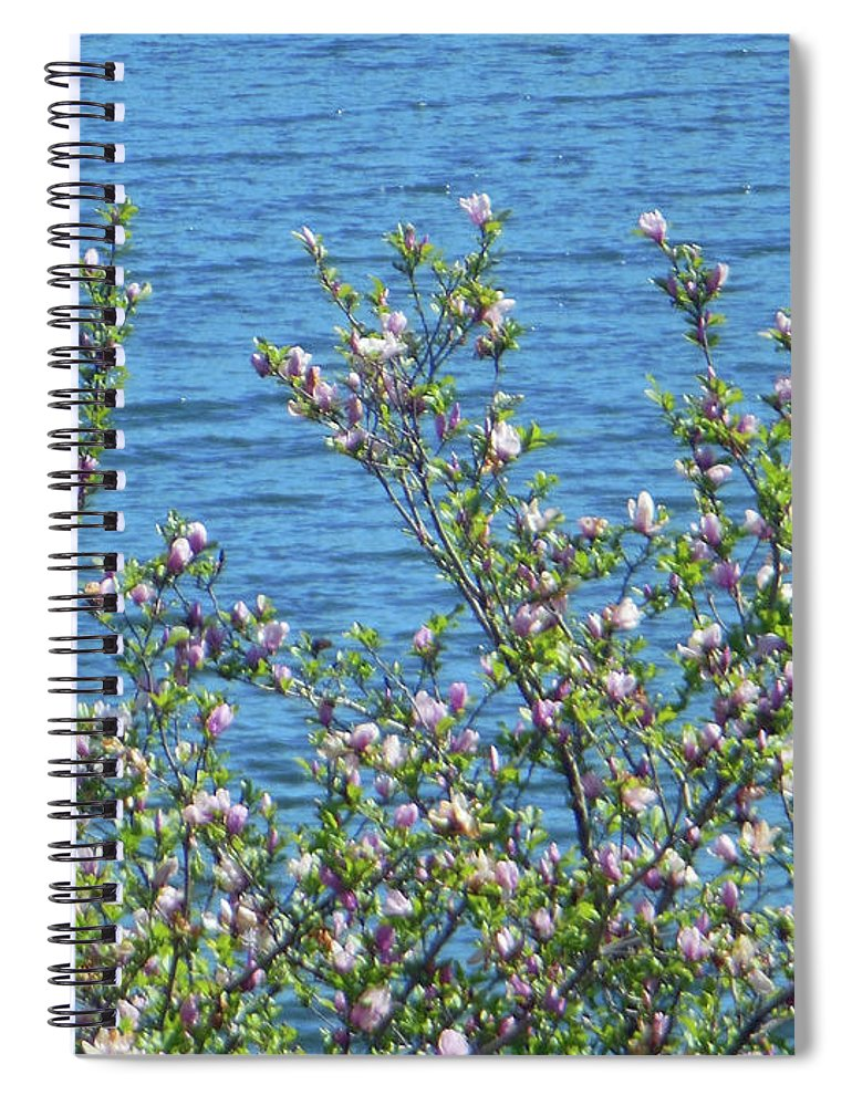 Magnolia Flowering Spiral Notebook featuring the photograph Magnolia Flowering Tree Blue Water by Rockin Docks Deluxephotos