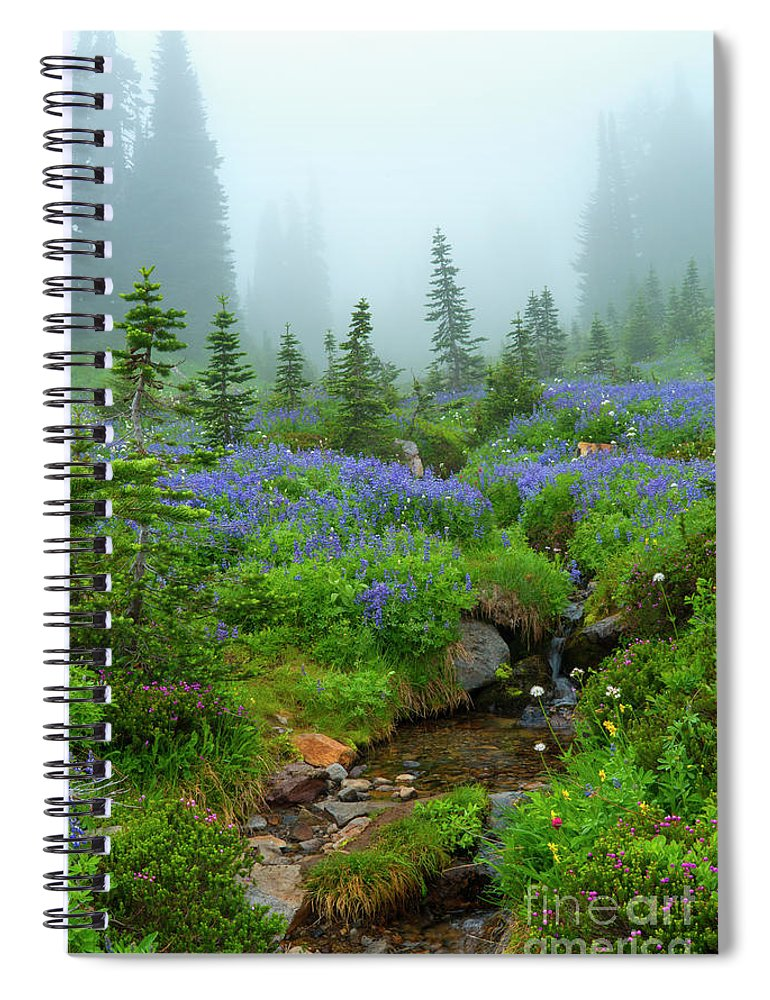 Stream Spiral Notebook featuring the photograph Meadows In The Mist by Mike Dawson