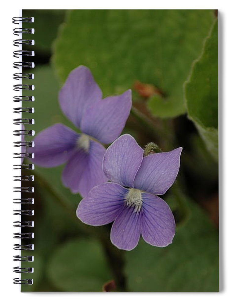 Michigan Purple Spring Flowers Spiral Notebook For Sale By Leeann