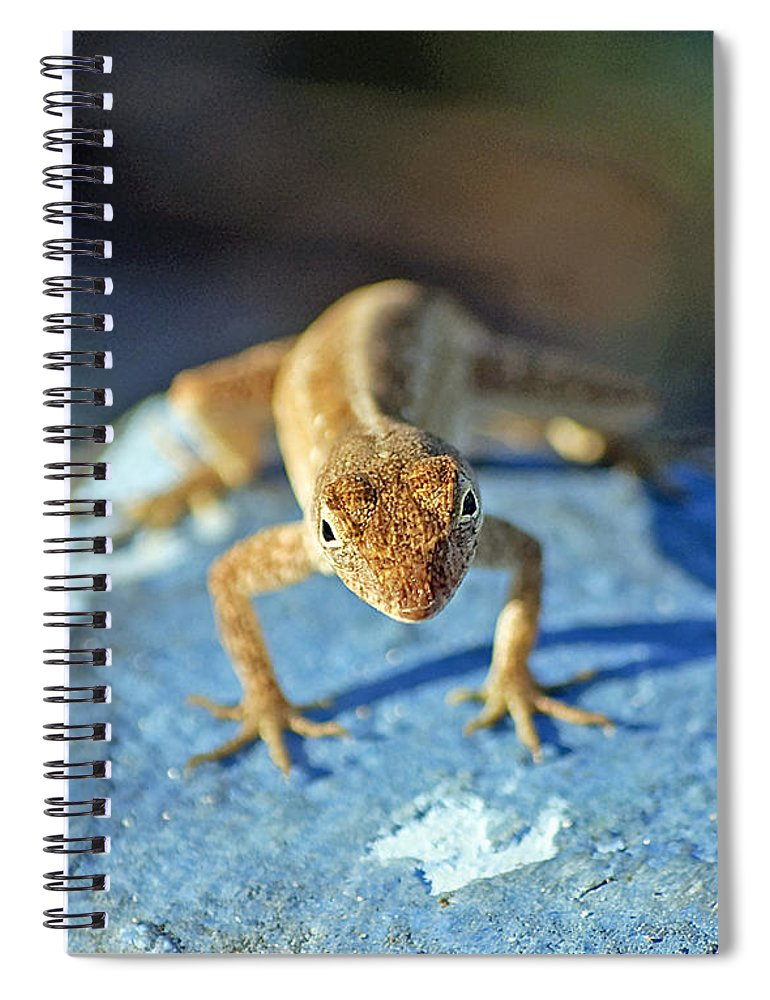 Anole Spiral Notebook featuring the photograph Mini Attitude by Kenneth Albin