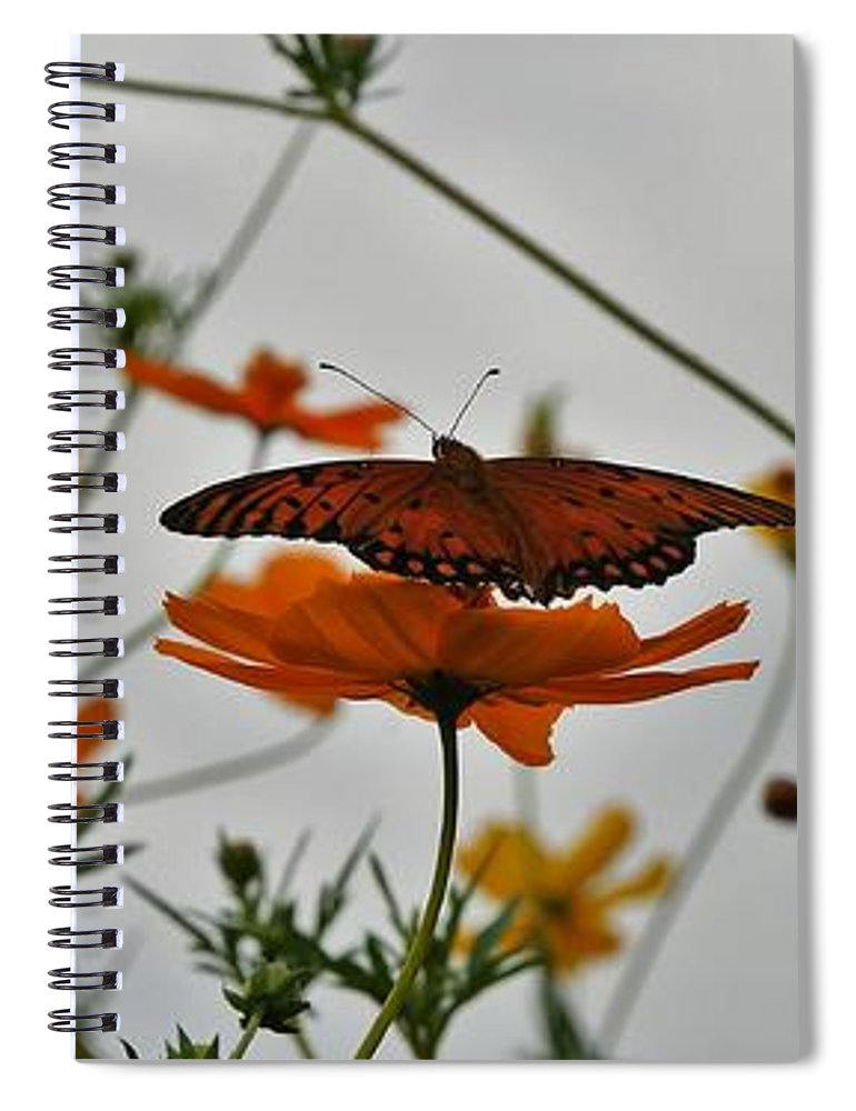 Monarch Butterflies Spiral Notebook featuring the photograph Monarch on the River by Leon Hollins III