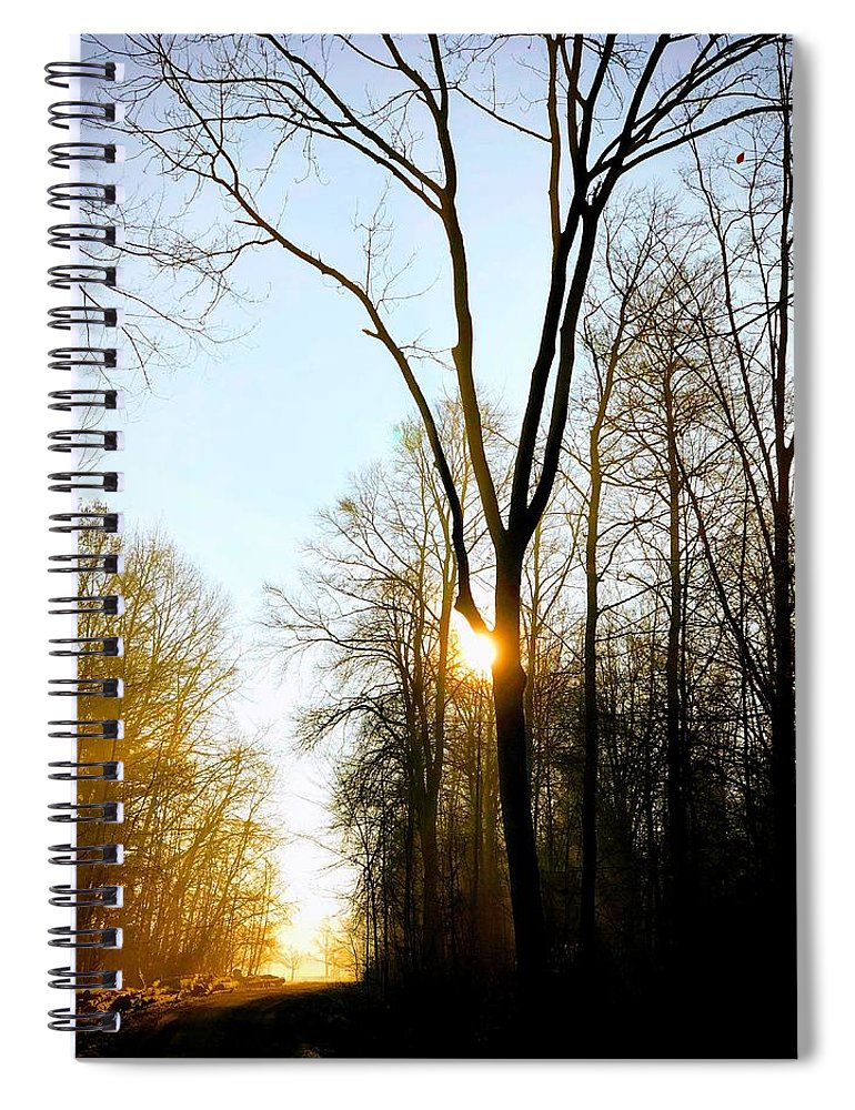 Tree Spiral Notebook featuring the photograph Morning Mood In The Forest by Matthias Hauser