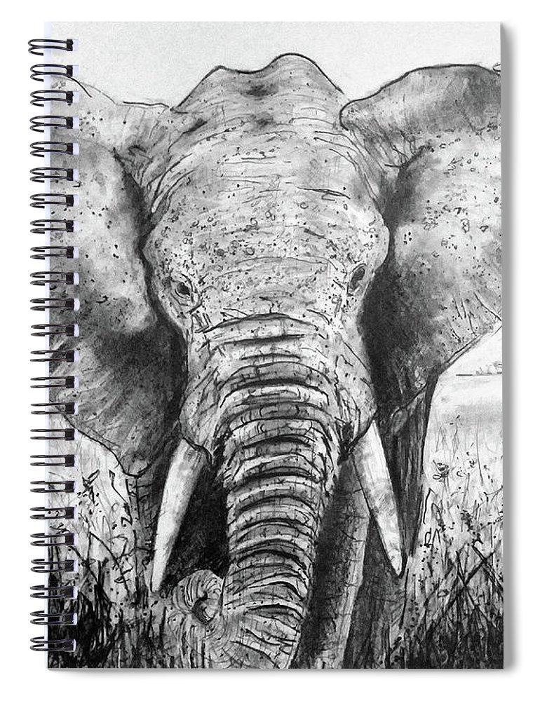My Friend The Elephant Ii Spiral Notebook featuring the drawing My Friend The Elephant II by Jose A Gonzalez Jr