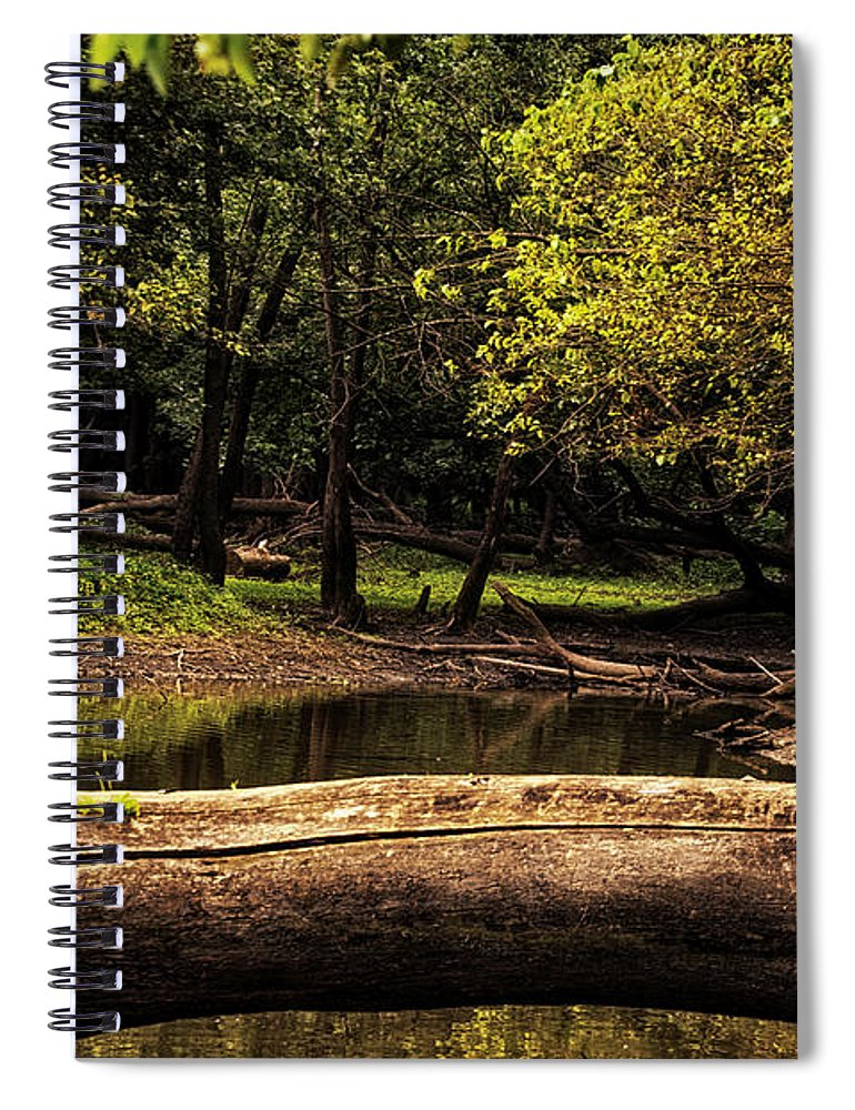 River Spiral Notebook featuring the photograph Natural Seating By River by Thomas Woolworth
