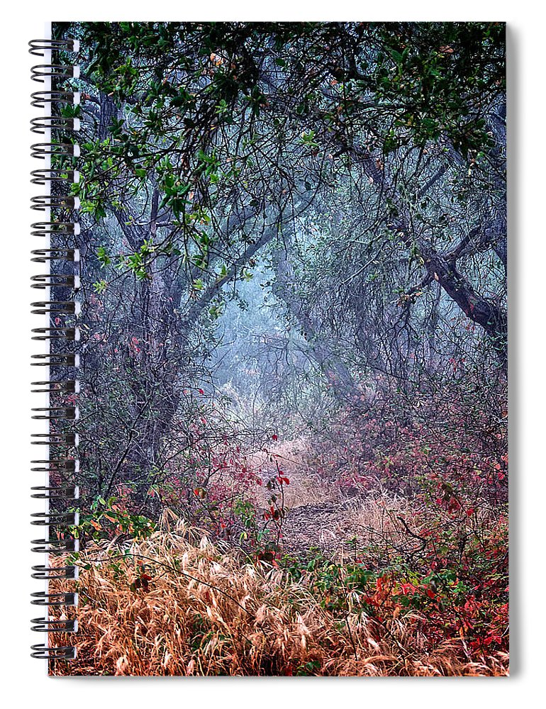 Nature Spiral Notebook featuring the photograph Nature's Chaos, Arroyo Grande, California by Zayne Diamond Photographic