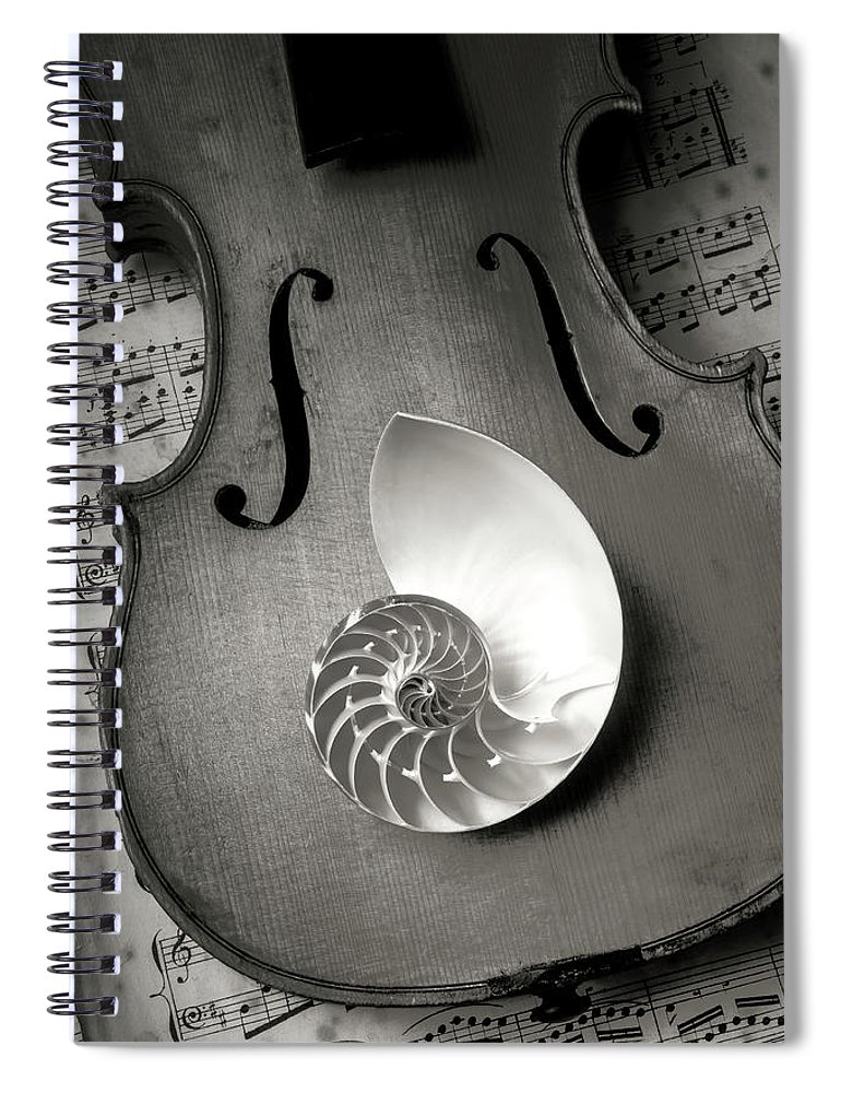 Nautilus Spiral Notebook featuring the photograph Nautilus Shell On Violin by Garry Gay