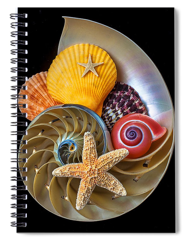 Chambered Nautilus Spiral Notebook featuring the photograph Nautilus With Sea Shells by Garry Gay