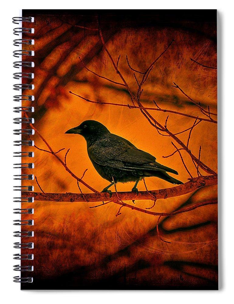 Bird Spiral Notebook featuring the photograph Night Guard by Evelina Kremsdorf