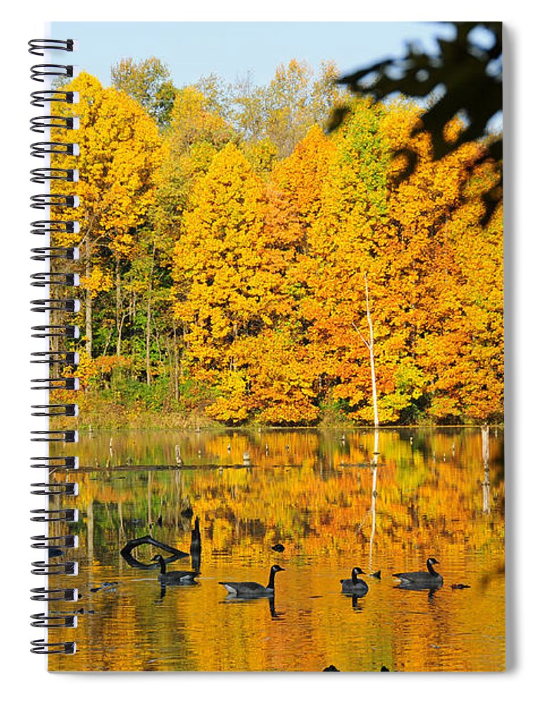 Geese Spiral Notebook featuring the photograph On Golden Pond 2 by David Arment
