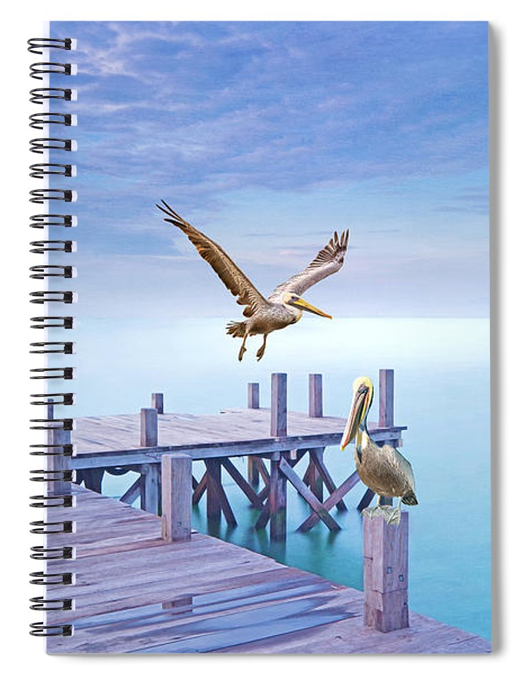 Brown Pelicans Spiral Notebook featuring the photograph Pelican Party by Laura D Young