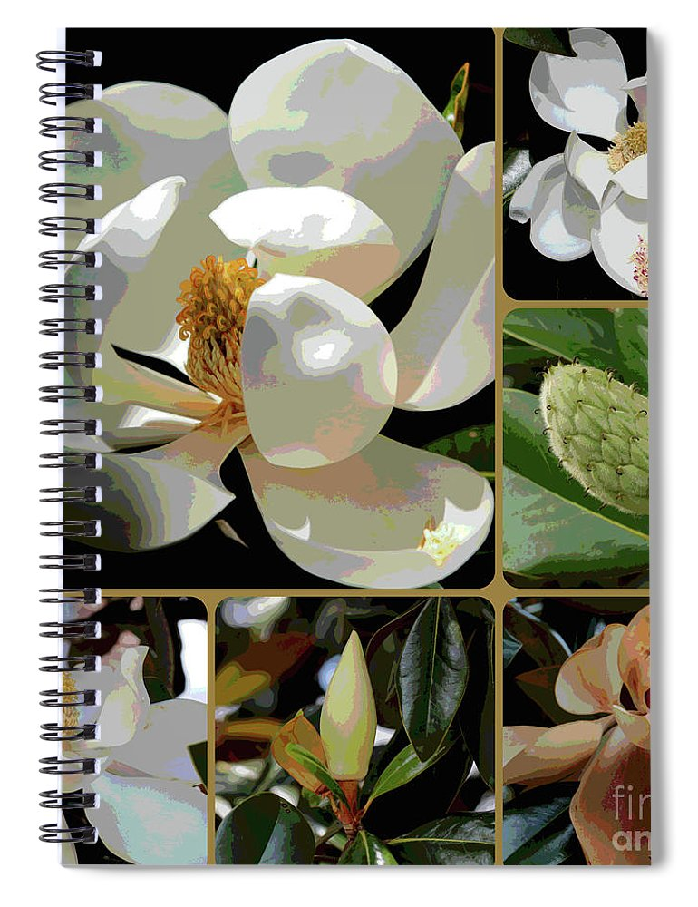 Magnolia Spiral Notebook featuring the photograph Phases Of Magnolia Grandiflora by Carol Groenen