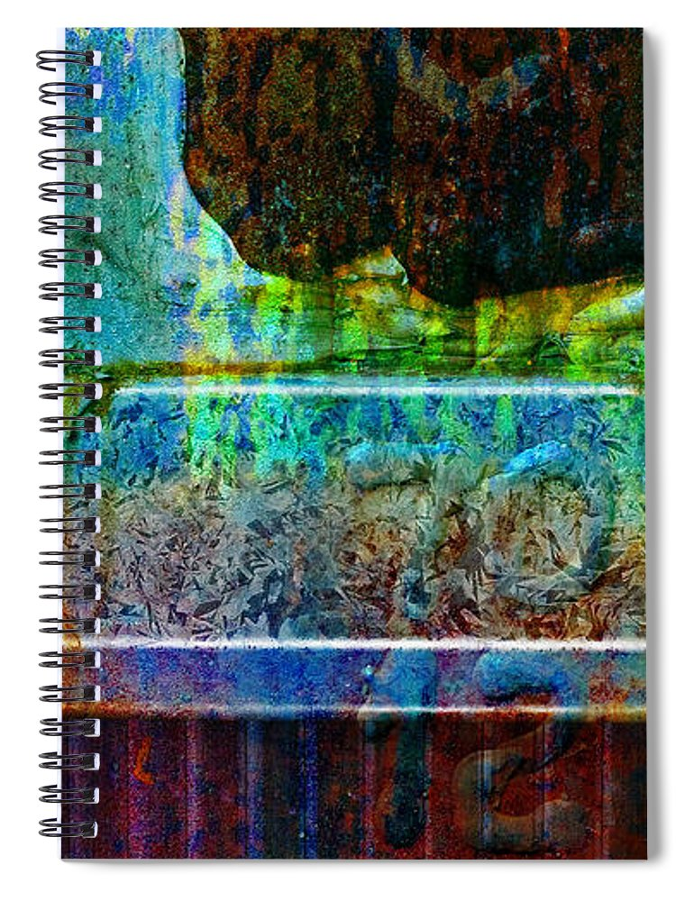 Pi Spiral Notebook featuring the photograph piNsky by Skip Hunt