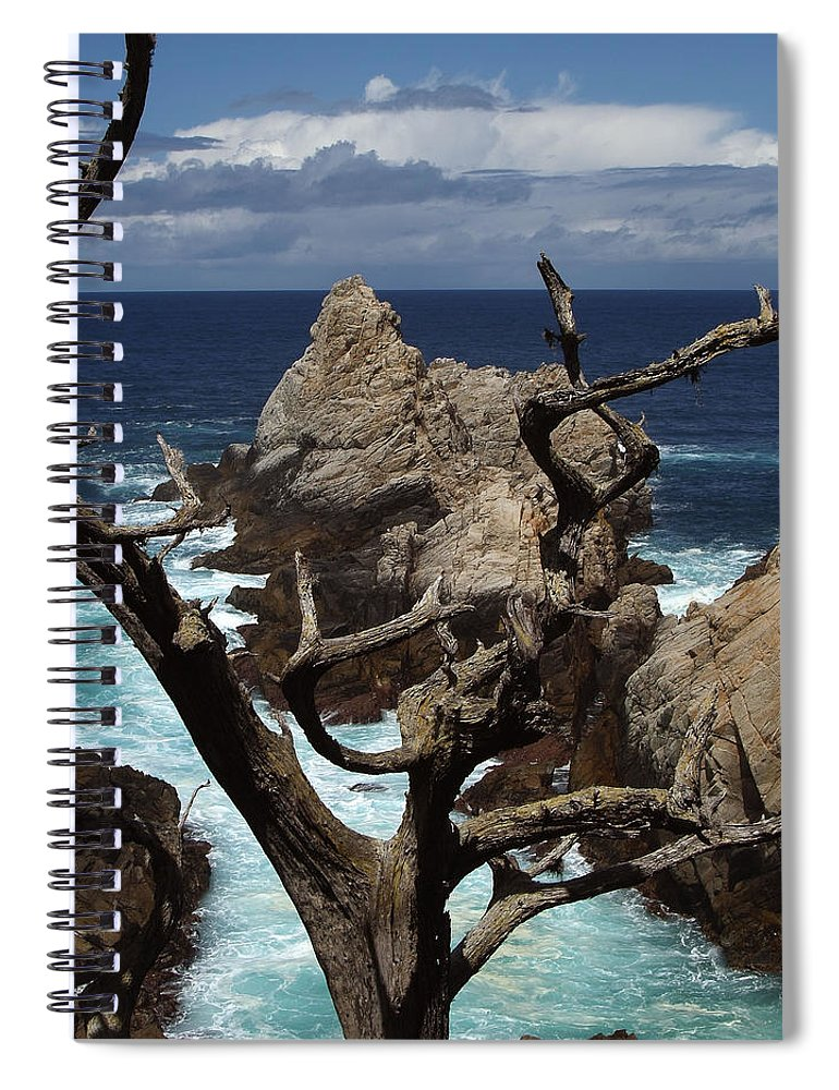 Carmel Spiral Notebook featuring the photograph Point Lobos Rocks and Branches by Charlene Mitchell