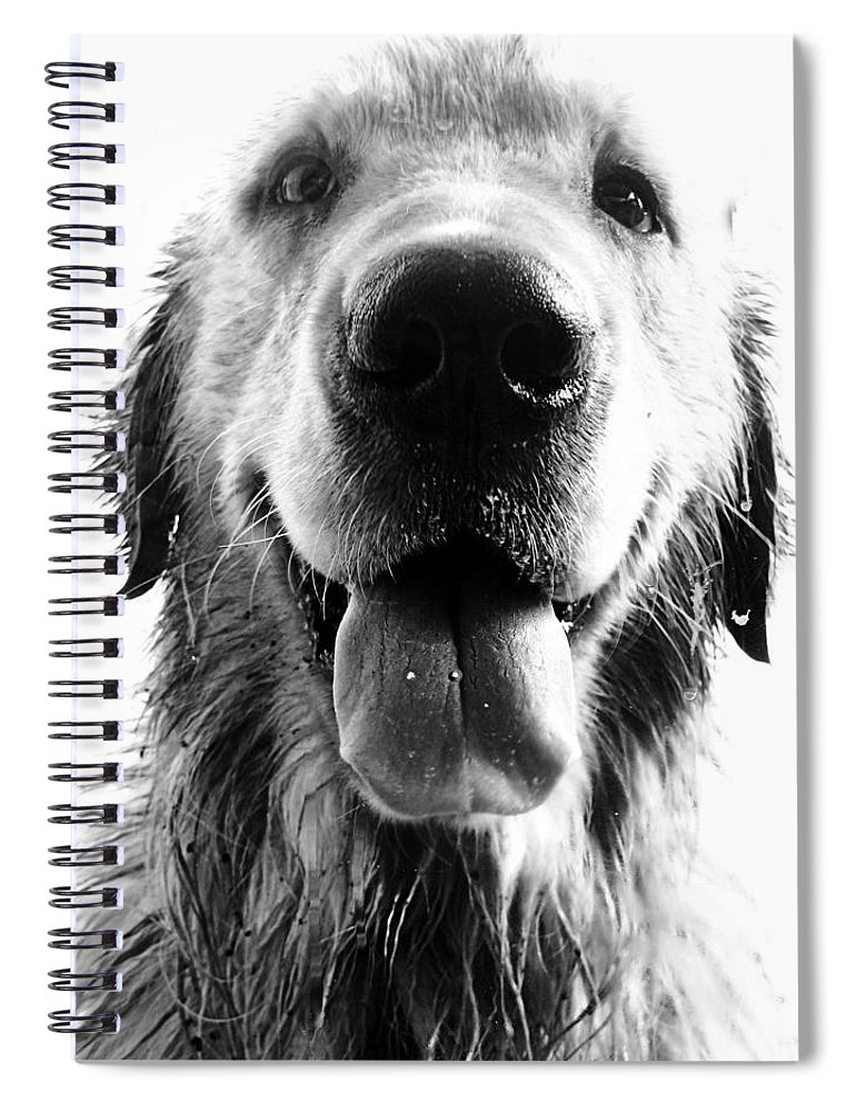 Argentina Spiral Notebook featuring the photograph Portrait of a Happy Dog by Osvaldo Hamer
