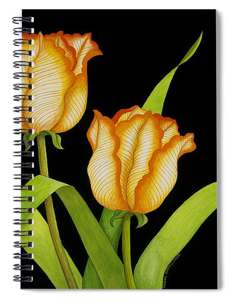 Two Orange-yellow Tulips Posing On A Black Background Spiral Notebook featuring the painting Posing Tulips by Carol Sabo