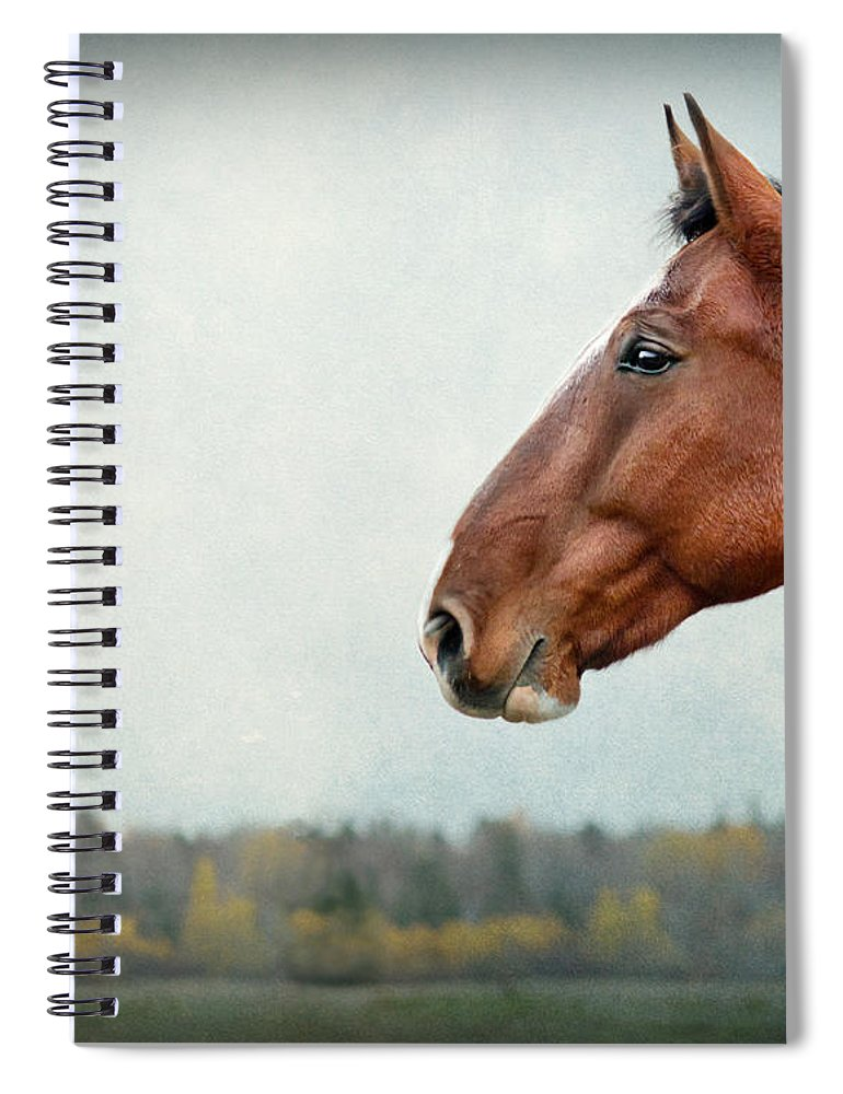 Horse Spiral Notebook featuring the photograph Proud by Maggie Terlecki