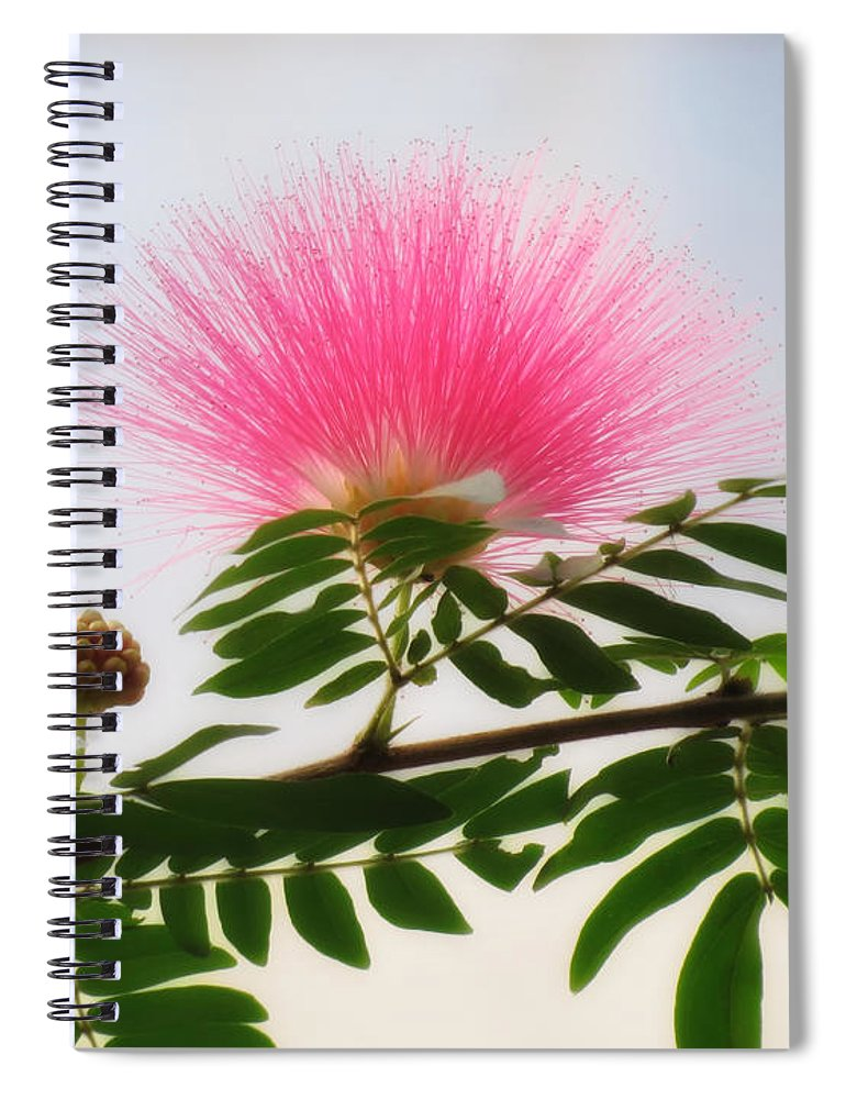 Puff Of Pink Mimosa Flower Spiral Notebook For Sale By Mtbobbins
