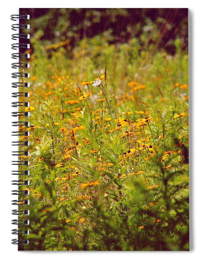 Flower Spiral Notebook featuring the photograph Queen Ann by Randy Oberg