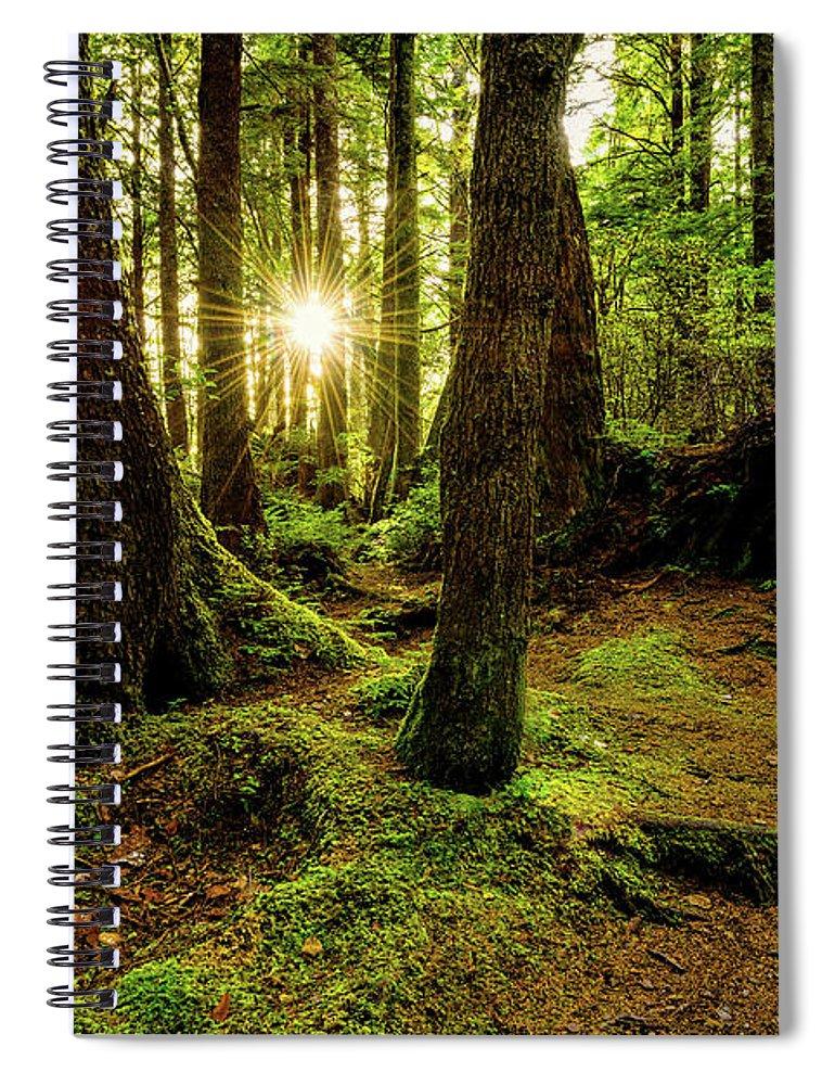 Rainforest Spiral Notebook featuring the photograph Rainforest Path by Chad Dutson