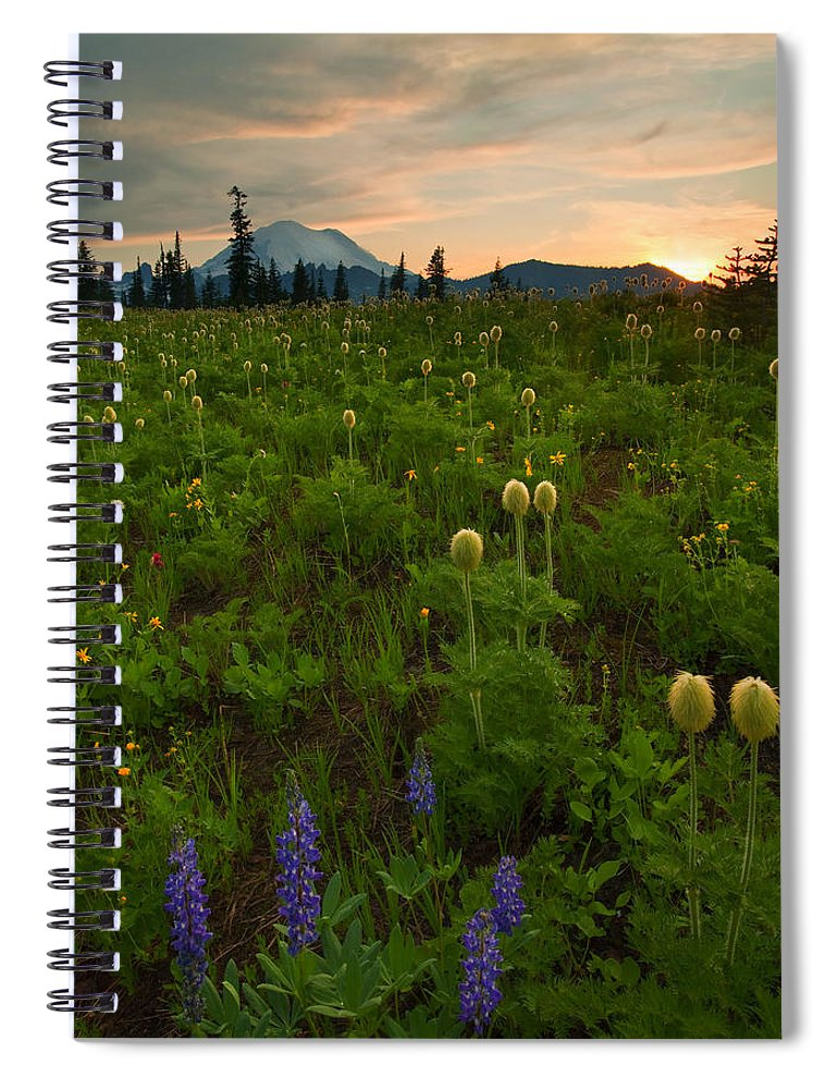 Meadow Spiral Notebook featuring the photograph Rainier Wildflower Light by Mike Dawson