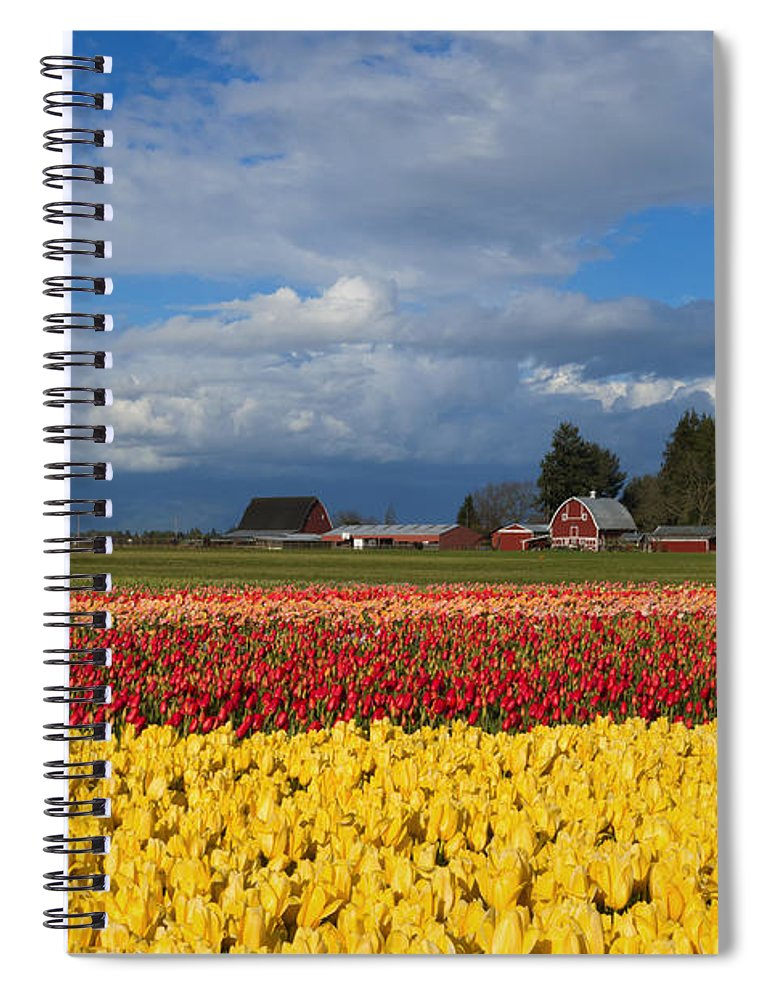 Red Barn Spiral Notebook featuring the photograph Red Barn Tulip Farm by Mike Dawson