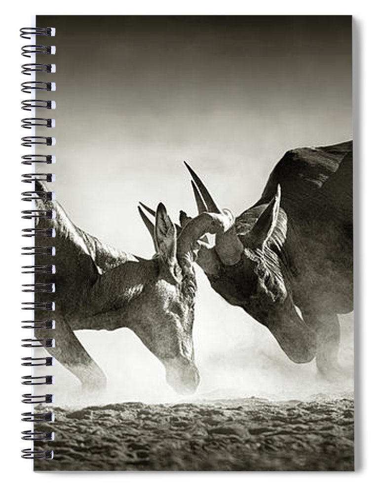 Hartebeest Spiral Notebook featuring the photograph Red Hartebeest Dual In Dust by Johan Swanepoel
