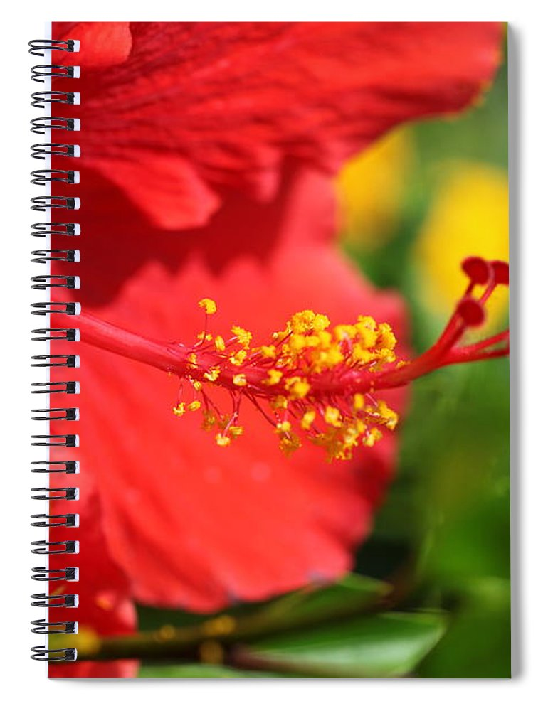Flowers Spiral Notebook featuring the photograph Red Hibiscus and Green by Nadine Rippelmeyer
