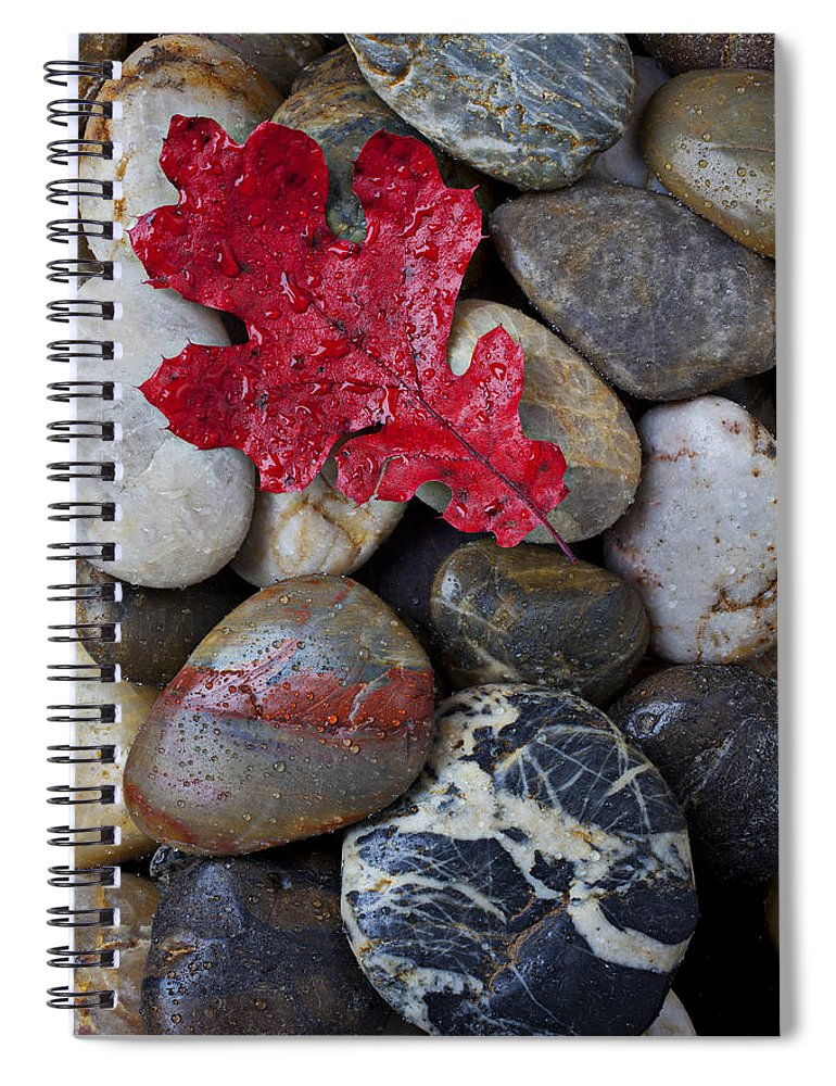 Red Leaf Spiral Notebook featuring the photograph Red Leaf Wet Stones by Garry Gay