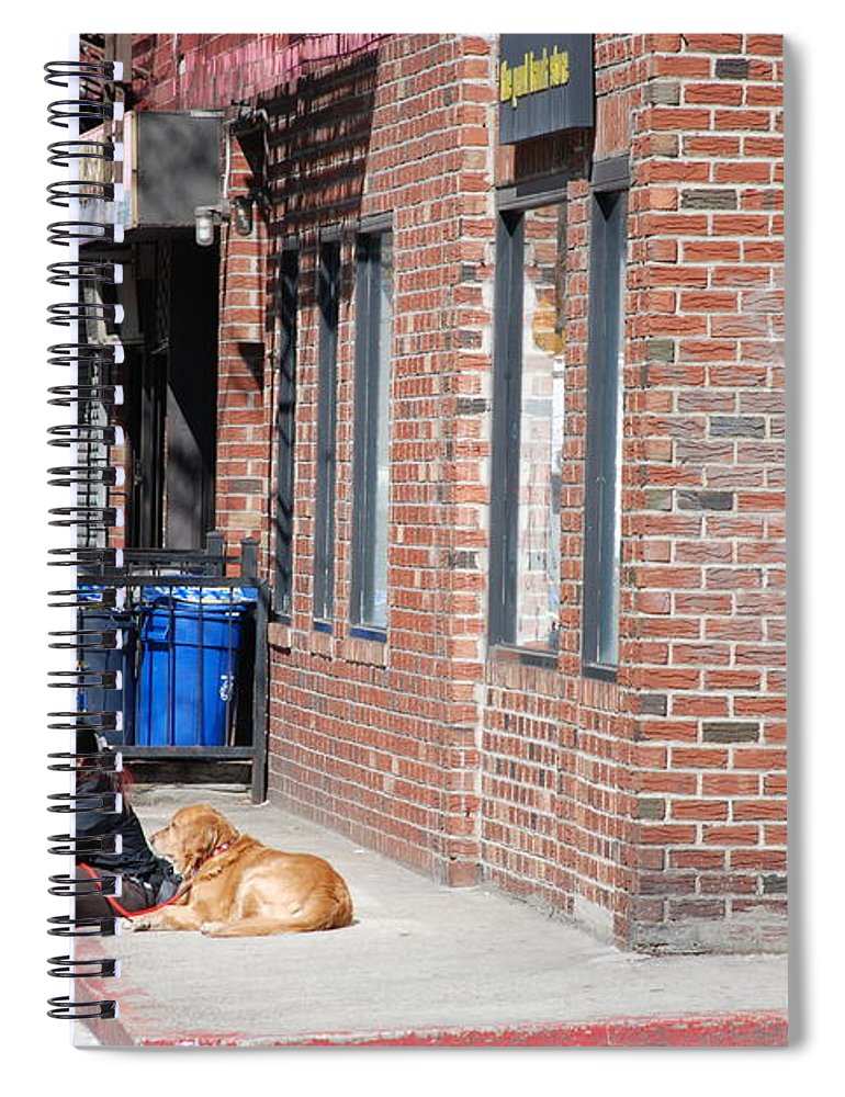 Girl Spiral Notebook featuring the photograph Resting On The Corner by Rob Hans
