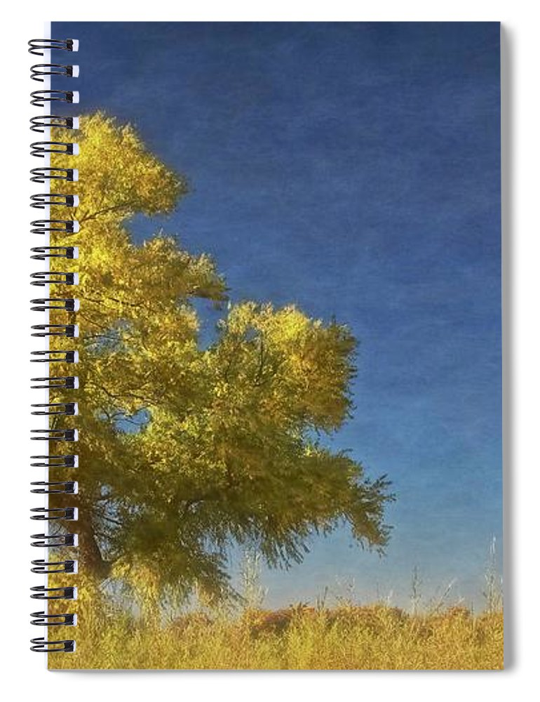 Nature Spiral Notebook featuring the photograph Rio Grande Bosque Blue and Gold, New Mexico by Zayne Diamond Photographic