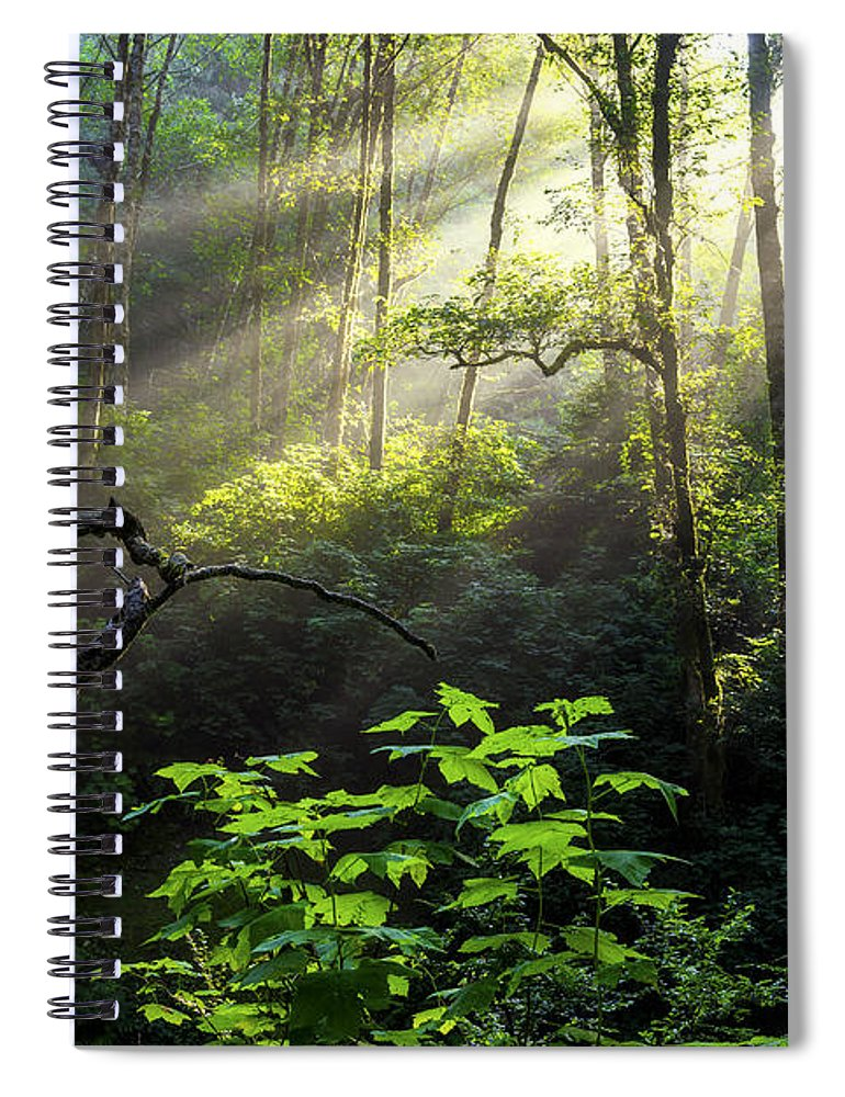 Light Spiral Notebook featuring the photograph Sacred Light by Chad Dutson
