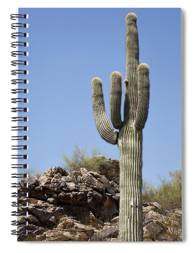 Saguaro Spiral Notebook featuring the photograph Saguaro 3 by Kelley King