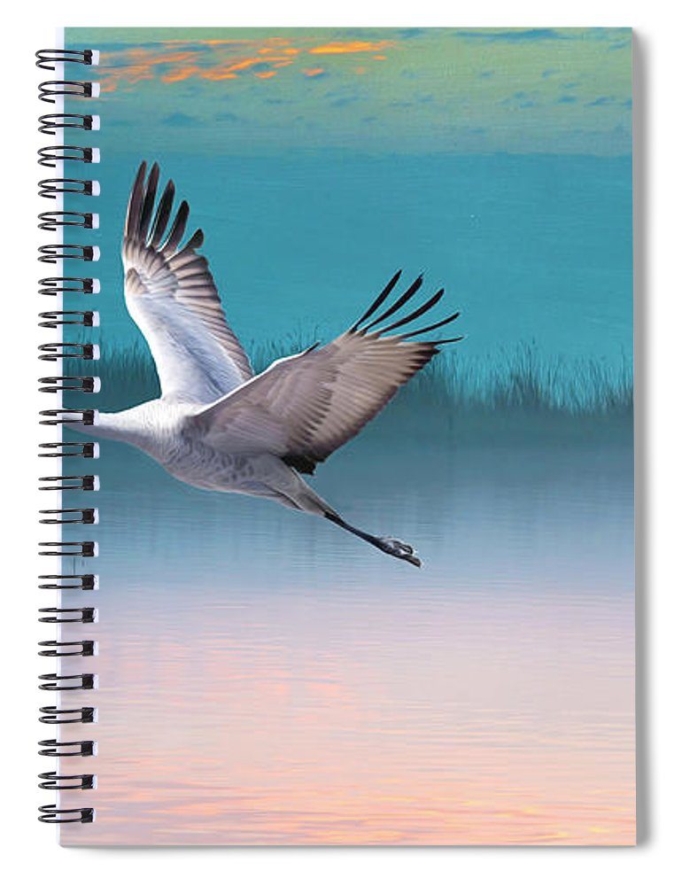 Sandhill Crane Spiral Notebook featuring the photograph Sandhill Crane And Misty Marshes by Laura D Young