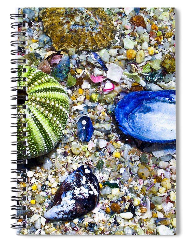 Seashore Spiral Notebook featuring the photograph Seashore Colors by Douglas Barnett