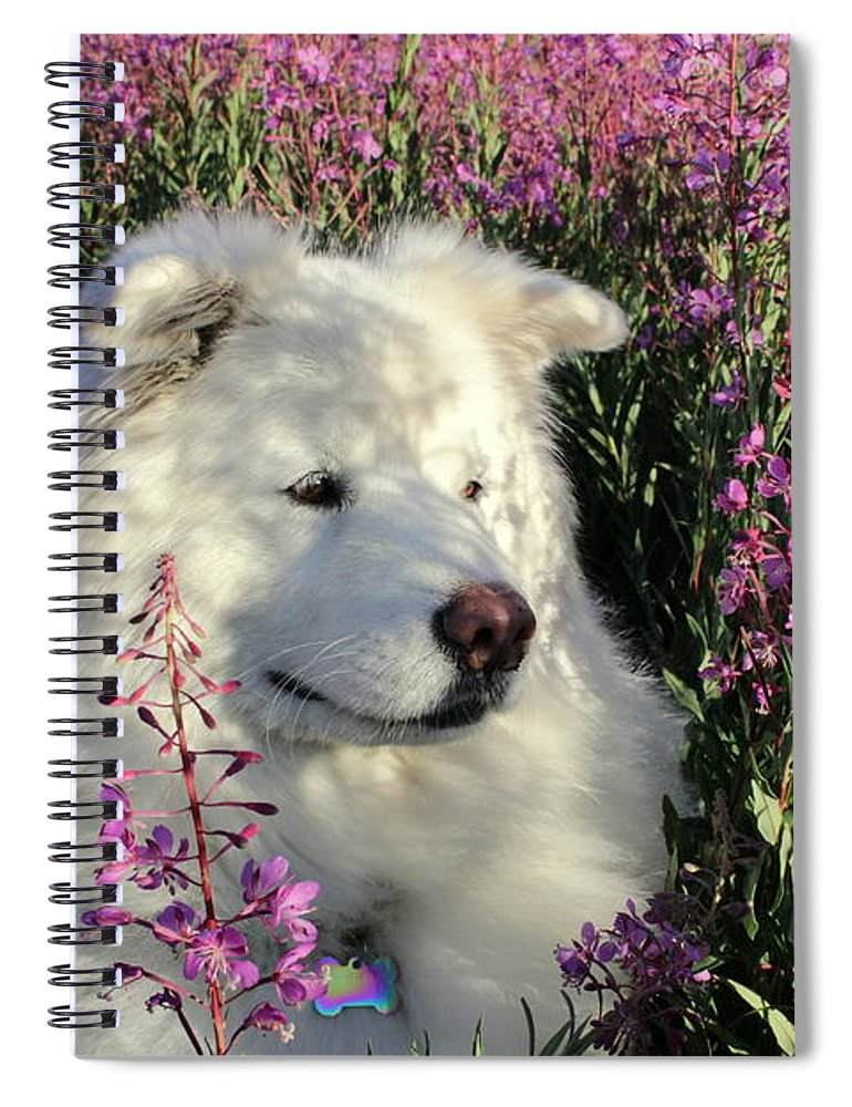 Samoyed Spiral Notebook featuring the photograph Shadows by Fiona Kennard