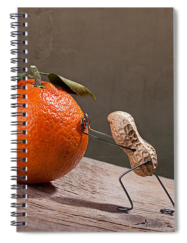 Peanut Spiral Notebook featuring the photograph Simple Things - Sisyphos 01 by Nailia Schwarz