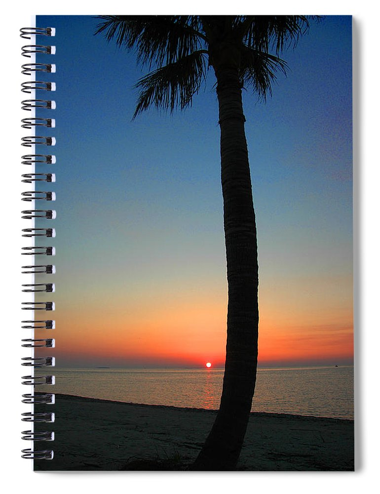 Photography Spiral Notebook featuring the photograph Single Palm And Sunset by Susanne Van Hulst