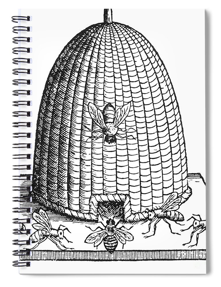 Agriculture Spiral Notebook featuring the photograph Skep Beehive, 17th Century by Science Source