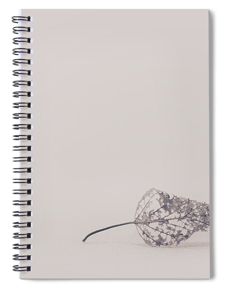 Leaf Spiral Notebook featuring the photograph Smallest Leaf by Scott Norris