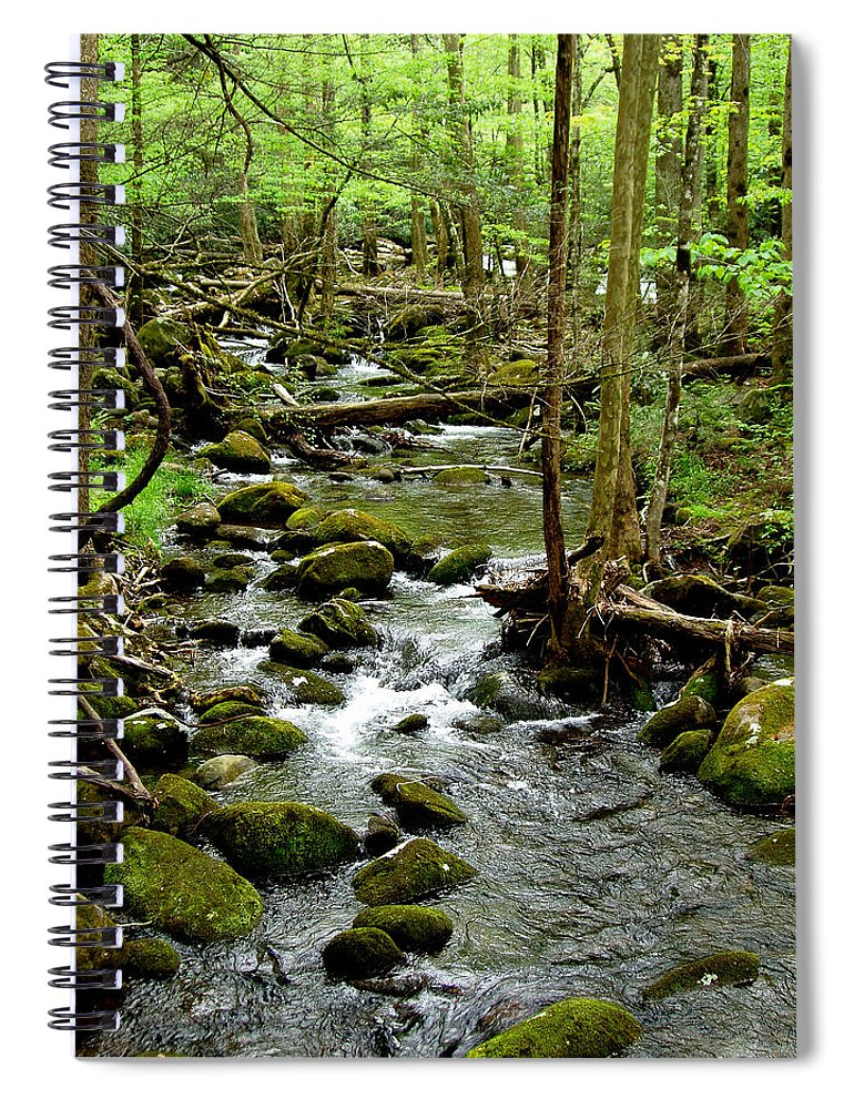 River Spiral Notebook featuring the photograph Smoky Mountain Stream 2 by Nancy Mueller