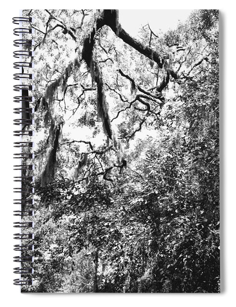Southern Charm Spiral Notebook featuring the photograph Southern Lamp In Black And White by Carol Groenen