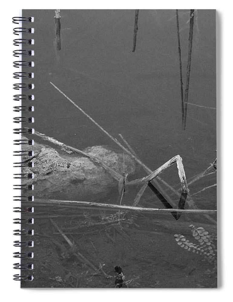 Black And White Spiral Notebook featuring the photograph Spider In Water by Rob Hans