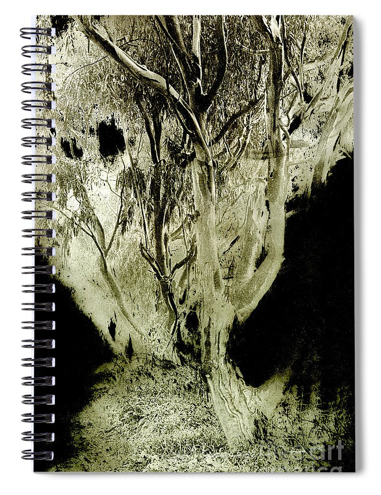 Abstract Spiral Notebook featuring the photograph Spirit Tree by Paul W Faust - Impressions of Light